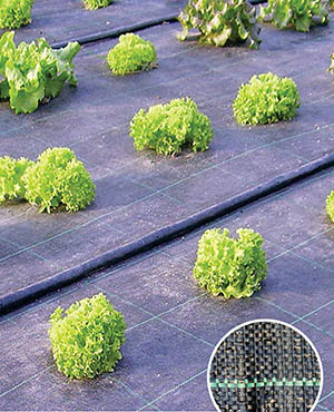 HDPE/PP Ground Cover/Weed Mats